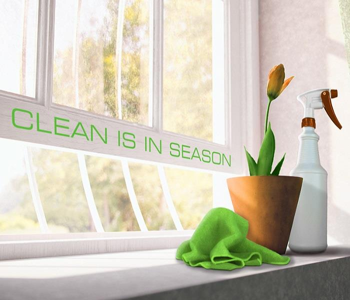 Cleaning Professional Recommendations to Help Spring Cleaning