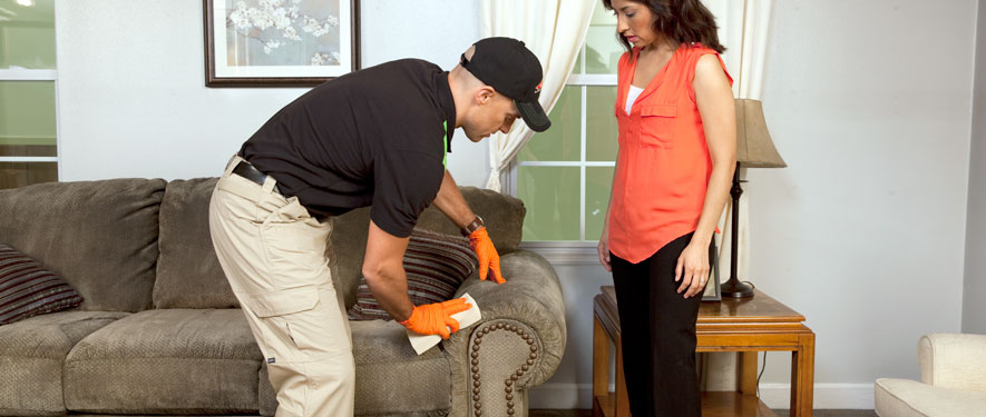 Hillsborough, NJ carpet upholstery cleaning